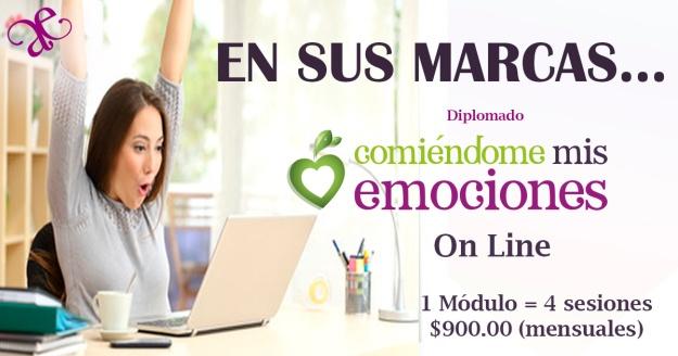 diplomado_online2